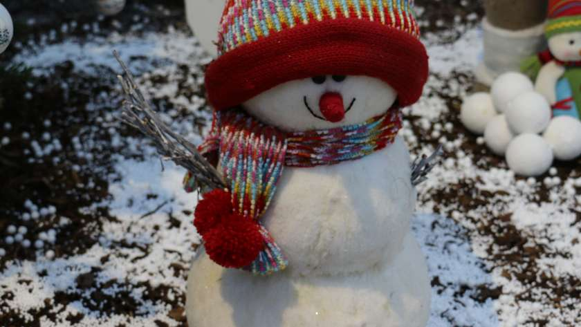 Wir wünschen ein wunderschönes Weihnachtsfest und ein gutes neues Jahr.