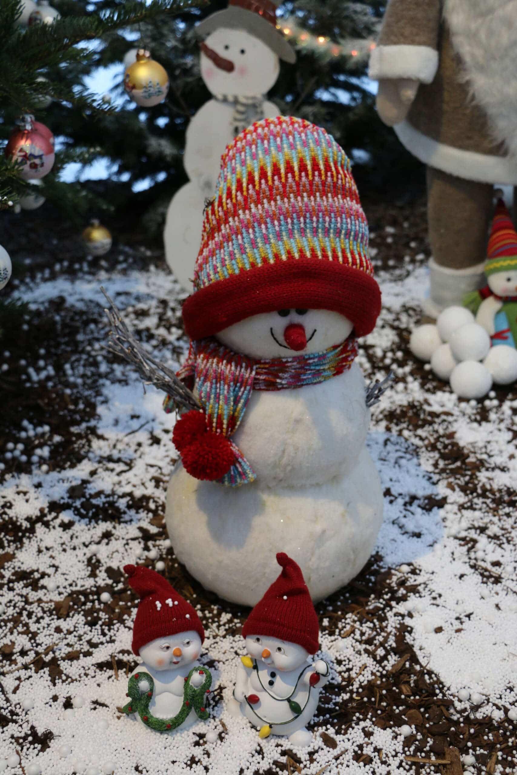 Ein schönes Weihnachtsfest und ein gutes neues Jahr!